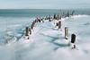Stakes [explored] (reclaimednj) Tags: 2018 littleeggharbortownship barnegatbay frozen winter ice fujifilmx100t vsco