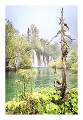 (Anscheinend) Tags: creek lake river rivulet bach plitvice nationalpark croatia kroatien landscape landschaft paysage paisagem paesaggio nature natur waterfall wasserfall cascada cascade cascata wald forest foret bosco bäume trees