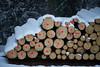 Red Marker (Ernst_P.) Tags: aut inzing österreich schöfftal tirol holz baum baumstamm schnee rot walimex samyang 135mm f20 winter snow invierno madera wood