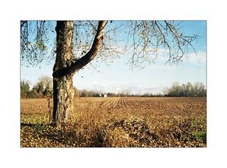 racconti d'autunno ;/)