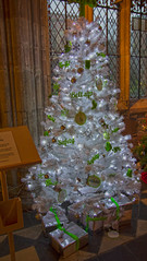 4U5A6411 (bartlett2) Tags: | worcester cathedral christmas trees worcestershire