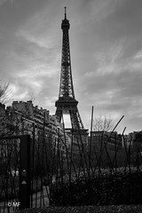 She's watching us (MF[FR]) Tags: baladesparisiennes city cityscape tower paris france îledefrance europe eiffel tour noir et blanc black white nuage clouds ciel sky overwatch samsung nx1