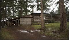 log cabin (tesseract33) Tags: tesseract33 peterlangphotographynet nikon light home houses cabin cabins logcabin