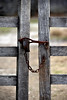 Old Farm Gate and Latch (Theory Of Flight) Tags: gate latch rust antique oldgate oldgateandlatch nikon d810 nikond810 weathered farm fence