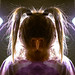 171218-study-interrogate-ponytails-girl.jpg