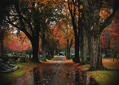 A walk with memories (Patricia McAtee - Photos of Maine) Tags: reflections memories cemetery laurelhillcemetery sacomaine color walk quiet serenity fall autumn