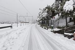 Winter Wonderland (Doc Privas) Tags: locarno ticino svizzera schweiz switzerland suisse tessin natale noël christmas weihnachten canon tenero tenerocontra tilo neve schnee snow neige winterwonderland 2017