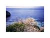 (MuraGlia g.) Tags: sardegna sardinia sardegnacosta southofitaly mare ilmiomare calamosca cagliari filmphotography