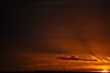 SUNSET | Haute-Normandie, FR - January 5 2018 (sigduberos) Tags: sunset landscape nature sky sun clouds nikonfrance nikoneurope nikond4s photographer sigriedduberos coucherdesoleil ciel flickr explore moreexplore normandie france hautenormandie orange yellow colors beauty eure régionnormandie photography iamnikon flickrnature winter 2018 travel nationalgeographic