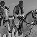 Egyptian Riders