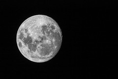 New Year Moon 2018-01-01 (7D_182A0006) (ajhaysom) Tags: moon fullmoon greenvale melbourne australia canoneos7dmkii tamron150600mmf563divcusdg2 100xthe2018edition 100x2018 image1100