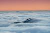 A9906849_s (AndiP66) Tags: sonnenaufgang sunrise sonne sun morning morgens dezember december winter 2017 belchen bölchen schweizerbelchen belchenflue eptingen jura baselland solothurn schweiz switzerland sony alpha sonyalpha 99markii 99ii 99m2 a99ii ilca99m2 slta99ii sony70400mm f456 sony70400mmf456gssmii sal70400g2 amount andreaspeters