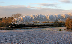 A Castle in the snow (Andrew Edkins) Tags: explore 5043 earlofmountedgcumbe castleclass 460 brgreen dawmill colliery snow frost cold sun railwayphotography mainlinesteam steamtrain steamlocomotive vintagetrains trees christmaswhiterose smoke exhaust travel trip winter 2017 december uksteam geotagged canon carriages chocolateandcream watercarrier field morning eos dawn loco colour whitacre warwickshire england clouds sky 1z43 incline arleybank landscape light gwr britishrailways nature countryside ice railtour excursion charter trails speed noise display show movement 7dmarkii steamy steam tyseleywarwickroad steamtravel guv greatwestern preservedsteamlocomotive railways flickr power performance