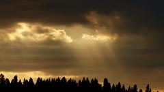 Late August evening on the seashore (Hakotauri, Raahe, 20170808) (RainoL) Tags: crainolampinen 2017 201708 20170808 august balticsea bothnianbay brahestad fin finland fz200 geo:lat=6469870193 geo:lon=2446908473 geotagged hakotauri hakotaurinlahti northernostrobothnia perämeri pohjoispohjanmaa raahe sea seascape seashore summer sunset