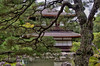 Hideaway (21mapple) Tags: ginkakuji ginkaku ji religion shrine japan japanese kyoto trees trust lake pond water reflections building