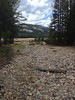 130817-01 (2013-08-21) - 0283 (scoryell) Tags: california tuolumnemeadows tuolumneriver yosemitenationalpark