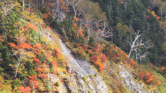 Color Lands (jasohill) Tags: autumn landscape tohoku nature mountains city lake fall red leaves 2017 hachimantai forest photography color japan iwate