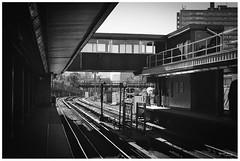 Curve Ahead (KaushikBiswas28) Tags: subway 35mm monochrome ilfordxp2 bw davisville filmphotography ilford downtowncamera iluvtoronto stilllife fatalframes framedtoronto imagesoftoronto street streetphotography urban streetvision analog canonae1 6ix ishootfilm iluvfilm traintracks