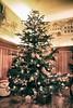 Weihnachtsbaum (CA_Rotwang) Tags: christmas tree baum bruck oberpfalz bayern bavaria germany deutschland weihnachten tanne