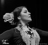 DSC05633-2 (corderoaleman) Tags: flamenco arnhem flamencoarnhem arte art dance dancing dancer bailaora bailaor cantaora cantaor