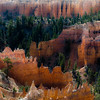 In Canyons 176 (noahbw) Tags: brycecanyon d5000 nikon utah abstract autumn canyon cliffs desert erosion forest hoodoos landscape natural noahbw rock square stone trees woods incanyons