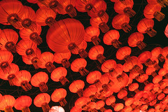 Wild Lights (Strangelove 1981) Tags: 2017 dublinzoo ireland wildlights zoo night lights glow light animals festival red lanterns lantern