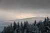 Warmth (Raphs) Tags: bayern bavaria bayerischerwald bavarianforest oberbreitenau winter forest wood sprucetrees snow clouds softlight warmlight fog raphs canoneos70d canonefs1585mmf3556isusm