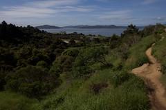 Looking Out (kevinfoxphotography53) Tags: miller knox regional shoreline kevinfoxphotography san francisco bay mt tamalpias ebparksok crest trail