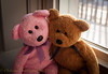 Big Hug (HTBT) (13skies) Tags: hugs together love windowlight window ledge sill pink brown embrace trust daytime teddybear teddybeartuesday htbt happyteddybeartuesday
