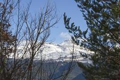 IMG_1020 (gravalosantonio) Tags: pirineos spain huesca jaca jacetancia invierno nieve aragon