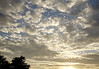 Last sunset of 2017: Afternoon sky (Steve Wedgwood) Tags: pointisabelregionalpark pointisabel dogpark ebrpd ebparksok elcerrito bayarea sanfrancisdcobay clouds
