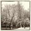 Winter in Belgium (Jan 1147) Tags: winter trees bomen monochrome sepia framing kader zwartwit zw bw blackandwhite depinte belgium snow sneeuw