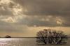 Lakeside (Teruhide Tomori) Tags: water lakeside winter landscape shiga japan japon nature 琵琶湖 湖北 長浜 滋賀県 日本 風景 田舎 countryside lake lakebiwa tree sky