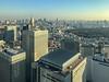 Tokyo skyline (shinichiro*) Tags: 新宿区 東京都 日本 jp 20171222img9914 1 2017 crazyshin appleiphone7plus iphone 7plus december winter tokyo japan 東京都庁 39482679771 2204468 gettying