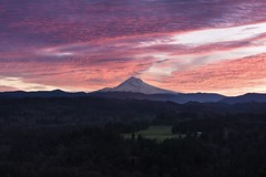 people ask me why I chase the light through middle of the night. It's for these times where you can sit back and truly appreciate the raw beauty of something so glorious that you forget about all the bad crap out there and just exist in the moment. (justin_crny24) Tags: markiv trees landscape photography sunrise mountains photos canon oregon mounthood