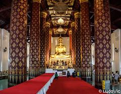 Ayutthaya - 11 (Lцdо\/іс) Tags: ayutthaya siam capital lцdоіс thailande thailand travel thailandia flickrtravelaward voyage temple gold buddha buddhisme or