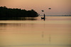 Fisherman in Kalpitiya (Mevout) Tags: pescador fisherman sunset atardecer couche soleil agua water eau bird pajaro oiseux reflejo reflection reflet sky ciel cielo calm calma tranquilidad tranquilite paz peace paix travel voyage viaje mevout