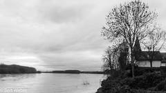 Rheinhochwasser 2018 (weber.bert) Tags: köln analogefotografie blackwhite inbiancoenero noiretblanc grauwertabstufungen sw