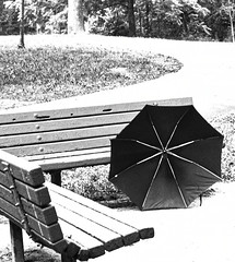 why? (avflinsch) Tags: ifttt 500px umbrella path summer bench why lost bw