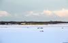 20171212 NSR 1755+7211, Limmen (Bert Hollander) Tags: limmen cas nsr loc 1755 eloc locomotief serie 1700 ddm1 vierwagenstam 7211 geel dubbeldekker train spitstrein sneeuw wit ns trein 3437amrhlm