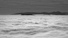 Donon (novembre 2014) - 157 (sebwagner837_55) Tags: donon bas rhin basrhin alsace grand est vosges nuages mer climont brézouard france