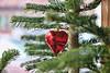 WEIHNACHTS-DEKO (Silvi_e summ99) Tags: baum tree deko silvie 2017 eos tanne herz heart