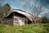 Melting (MilkaWay) Tags: georgia ruralgeorgia jacksoncounty barn tinroof abandoned decay theforgotten baretrees grass rust winter dilapidated