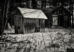 Snowy Barns (Russ Kerlin Photography) Tags: barn snow monochrome bw