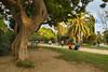 Parc de la Ciutadella (pxls.jpg) Tags: barcelona tokina1116f28 canon50d catalunya spain es