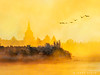 Take Flight (James Neeley) Tags: idaho idahofalls snakeriver fog sunrise idahofallstemple ldstemple jamesneeley best2017