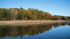 Colourful Shore D7C_5779 (iloleo) Tags: fall landscape reflection ontario grasscreekpark nikon d750 colourful autumn nature stlawrence