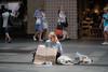 Pitt Street, Sydney (tonyg1494) Tags: homeless pittstreet sydney australia sad needypeople poor photography beggar