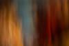Moving # 4 (CBrug) Tags: moving abstract abstrakt rubens khm metropolitanmuseumofart verschwommen farbe colors icm intentionalcameramovement