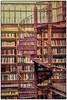 Stairway to ... (dejongbram) Tags: indoor rijksmuseum library bibliotheek amsterdam tonemap staircase interiour holland d500 nikon ngc spiral book bookshelf
